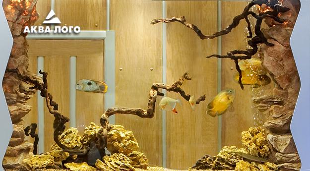Пресноводное оформление с искусственными декорациями Архив. 2006год.